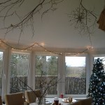 Branches hung from the ceiling