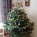 Real tree adorned in chocolate brown & regal purple
